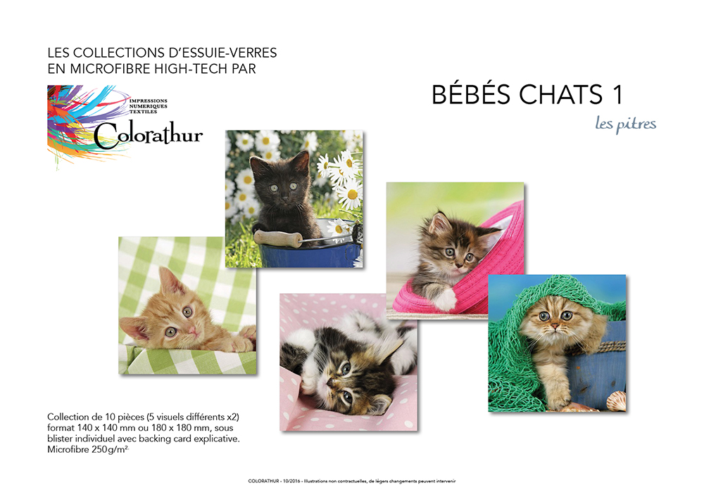bb chats 1