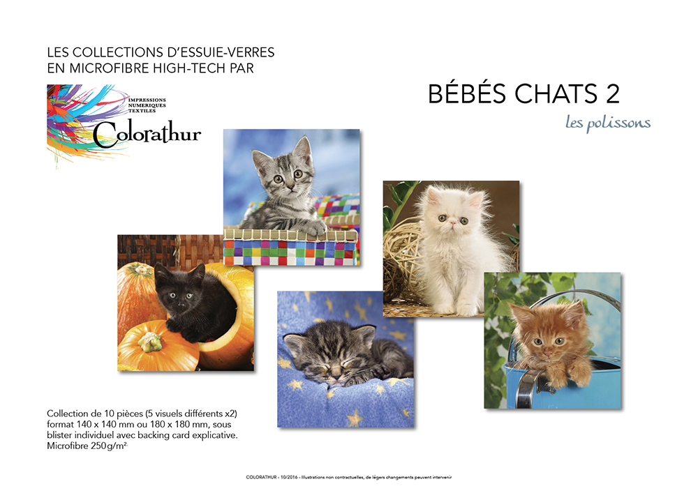 BB CHATS 2